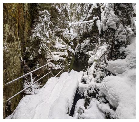 Winterwildnis in den Schwedenlöchern
