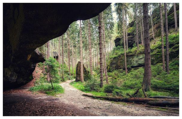Wanderweg in der Eulentilke