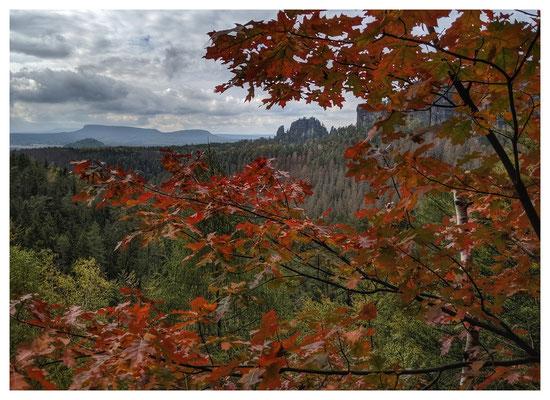 Herbststimmung auf dem unteren Terrassenweg in der Sächsischen Schweiz
