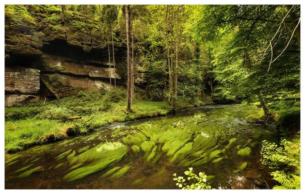am grünen Fluss - im Kamnitztal