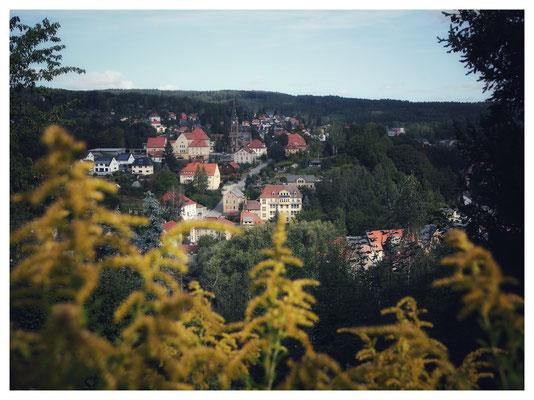 Blick auf die Kunstblumenstadt Sebnitz