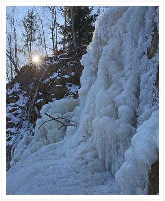 ...war nach dem Frost der letzten Wochen schön durchgefroren.