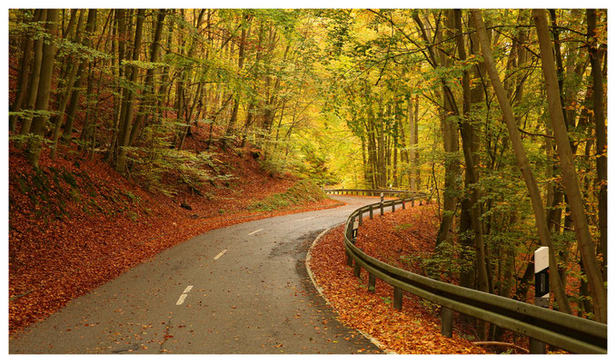 Fahrt in den Herbst...