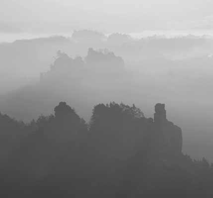 Morgennebel im Elbsandsteingebirge