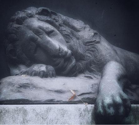 the lion sleep tonight (Grabmal in Pirna)