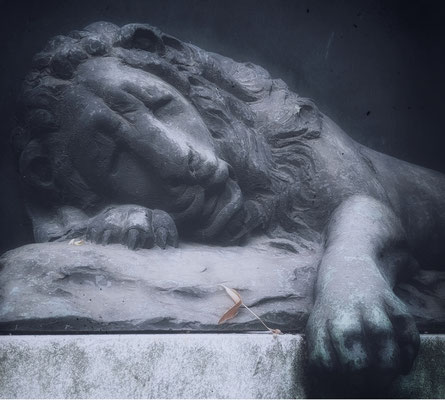 the lion sleep tonight (Grabmal in Pirna)
