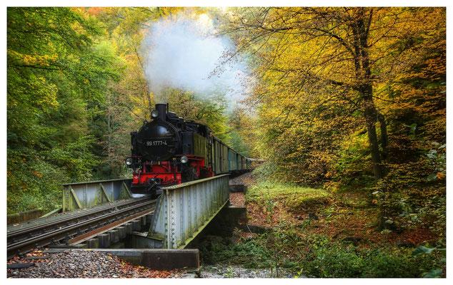 Fahrt in den Herbst (Weißeritztalbahn)