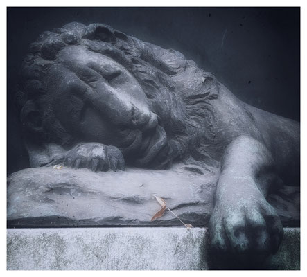 the lion sleeps tonight (Friedhof)