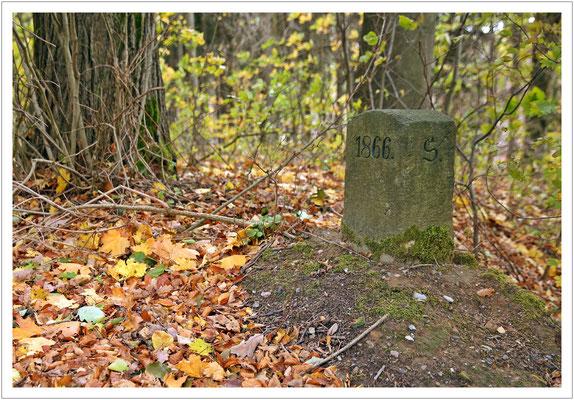 S 1866 - Grenzstein zwischen S(aupsdorf) und H(interhermsdorf) (steht auf der anderen Seite des Steins) von 1866