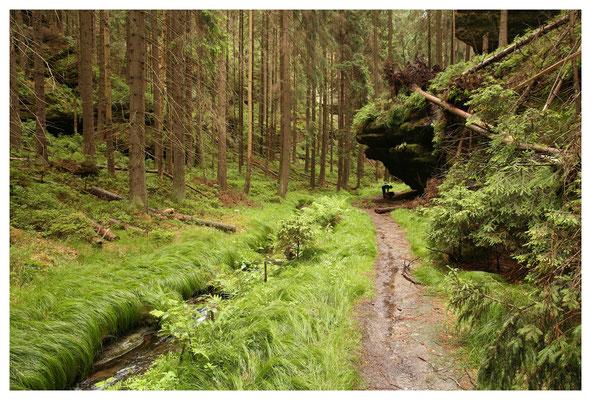 wo Deutschland endet - das Weißbachtal tief in der Hinteren Sächsischen Schweiz