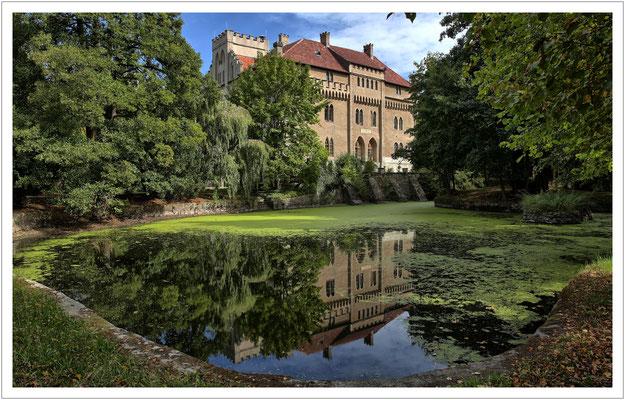 Schloss Seifersdorf - mit Spiegelbild im Entengrützenteich
