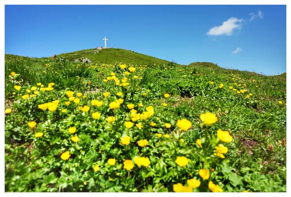 fast oben - Blick zum Gipfelkreuz des Diedamskopf
