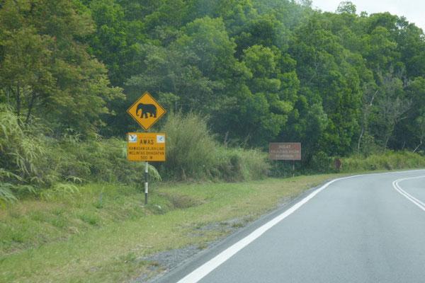 East-West Highway
