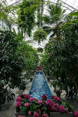 Washington DC - Botanical Garden