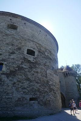 Tallinn - dicke Margarete