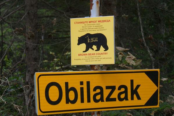 Tara Nationalpark - vorsicht Bären