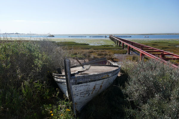 Ria Formosa Nationalpark