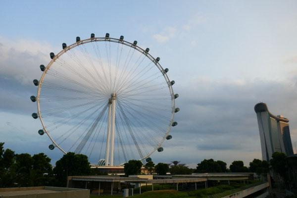 Singapur Eye