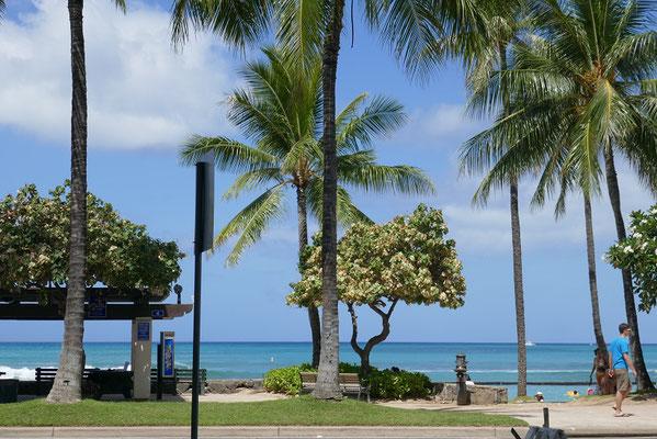 Impressionen aus Waikiki
