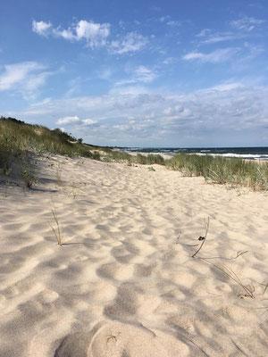 Traumstrände an der Ostsee