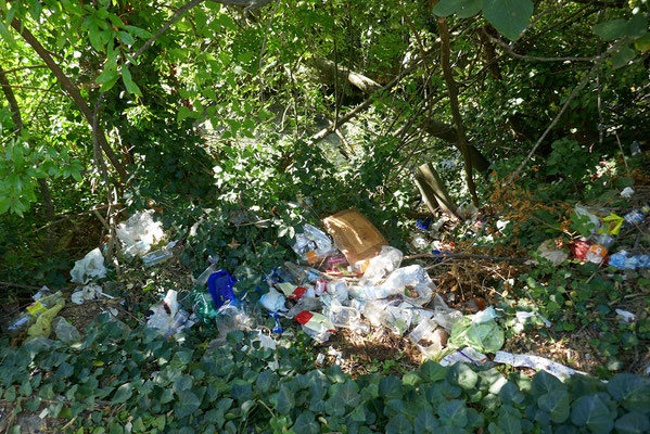 Müll am Straßenrand und in der Natur sind ein echtes Problem im Land