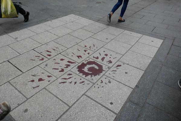 eine der Rosen von Sarajevo