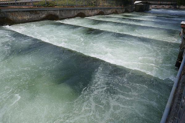 Fischleiter am Staudamm