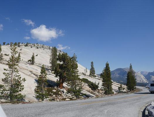 Yosemite Nationalpark - Tioga-Pass