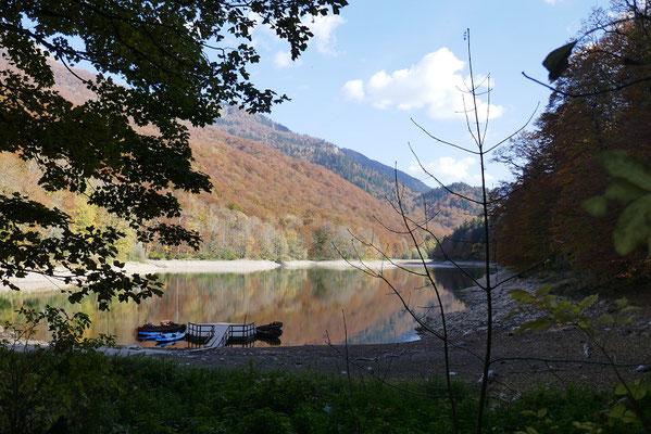 Biogradska Gora Nationalpark