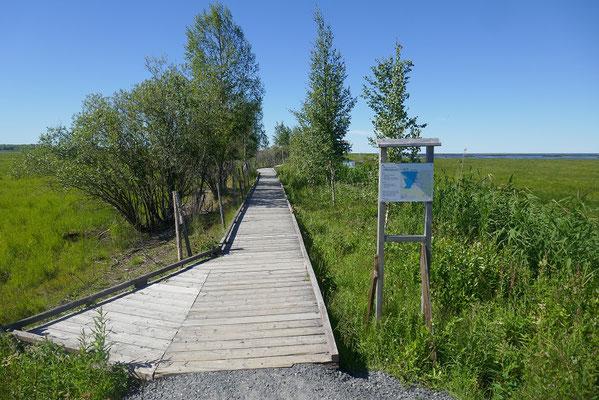 Vogelschutzgebiet Liminka Bay