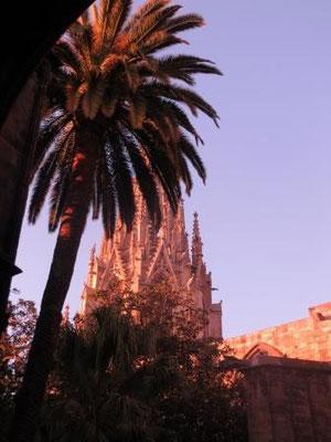 Kathedrale im Abendlicht