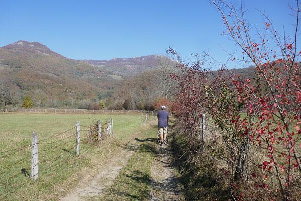 Autocamp Rabrenovic - Spaziergang zum Fluss Tara