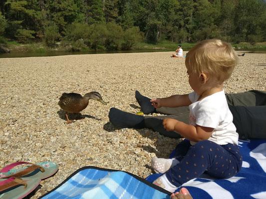 Yosemite Nationalpark - Zoé beim Enten füttern