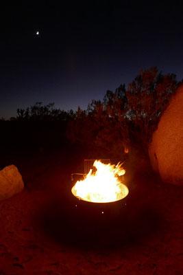 Joshua Tree Nationalpark - unvergessliche Campingabende