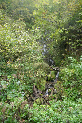 Sutjeska-Nationalpark