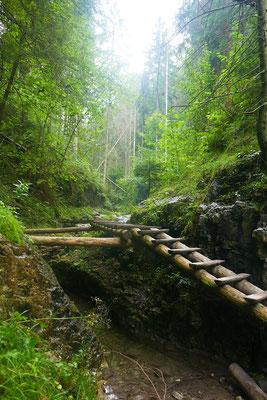 Suchá Belá Wanderweg