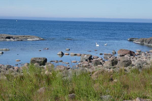 Impressionen von der Küste Finnlands