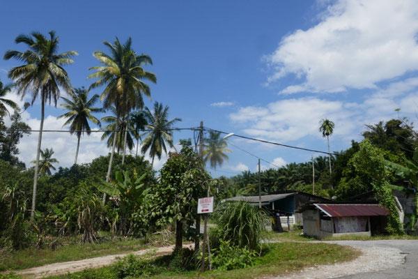 Ostküste Malaysia