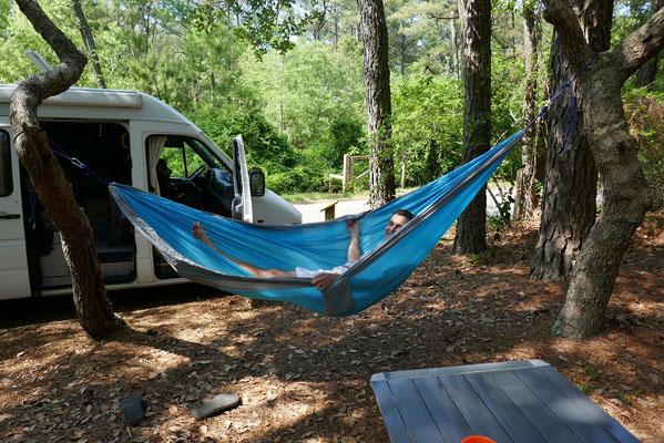 Campingplatz im First Landing State Park