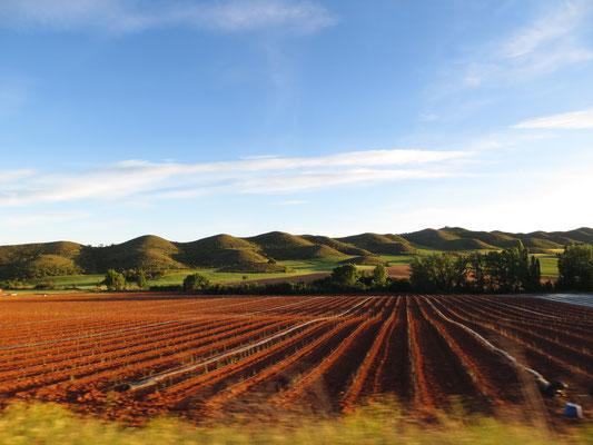 Fahrt nach Arguedas