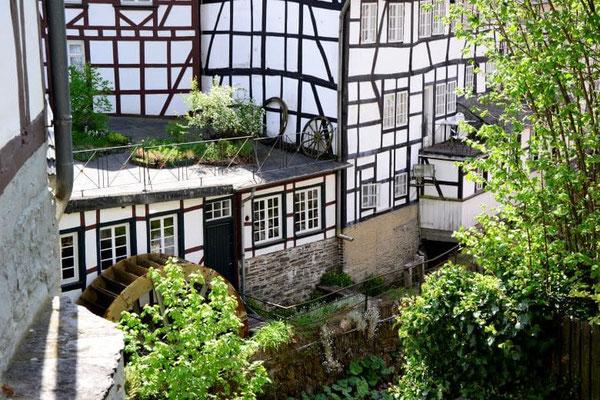 Ausflugsziel Monschau Weg zur Haller-Ruine