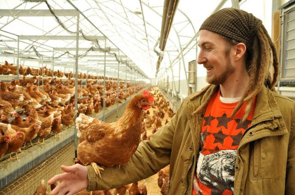 I used to purchase eggs from this farm in Canada.  The farm is called Rabbit River, and has very happy chickens!