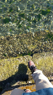 Tokyo bay is not as dirty as I would have guessed.  The sea water near my house looks crystal clear!