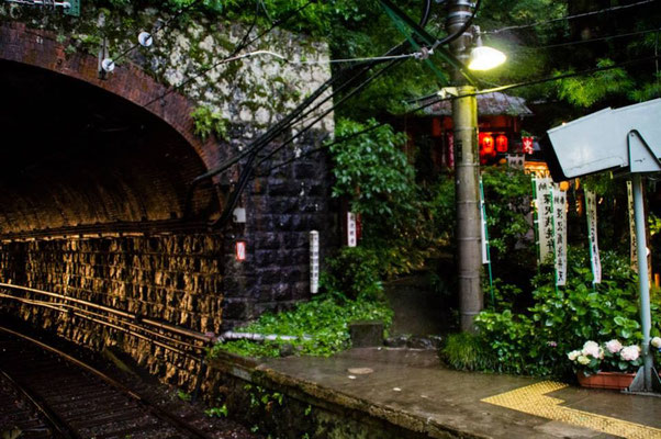 The Hakone Tozan railway is my favorite train in Japan.  It travels through fantastic tunnels, and zigzags up the mountain slowly.