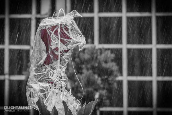 Ein Herz im Regen