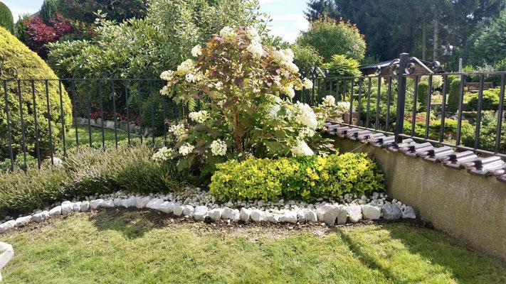Création de votre jardin par BLS