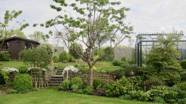 Entretien de jardin et tailles de haies par BLS