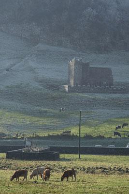 Fore Abbey, Altglas: Carl Zeiss Jena DDR MC Sonnar 135mm f3.5