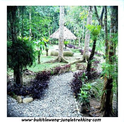 Batu Kapal Ship Caves Jungle Trekking Tours In Bukit