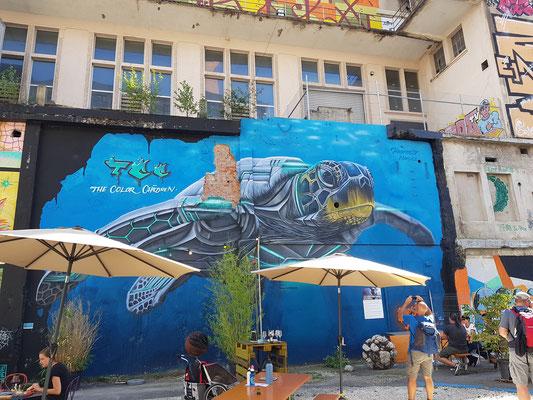Grafiti uf em Attisholz-Areal